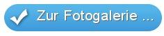 Blauer Button Fotogalerie